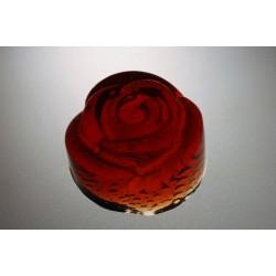 Griotte s růží